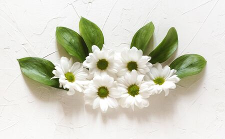 a composition of white chrysanthemums lay flat on a white background.