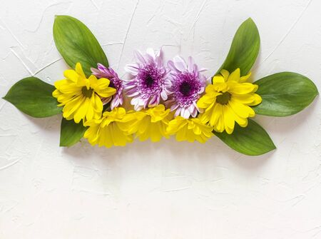a composition of yellow and purple chrysanthemums lay flat on a white background with a copy of the space.