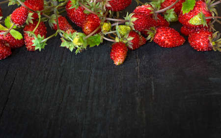 small wild strawberries on a black wooden background with a copy of the space 免版税图像