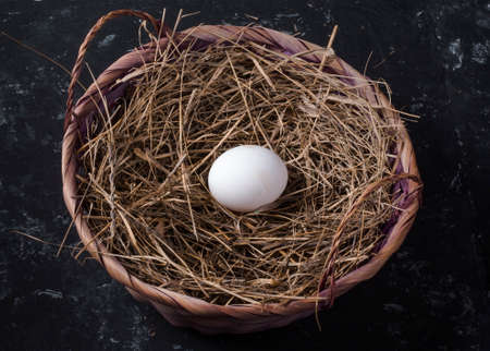 one chicken egg in a basket with hay on a dark background,the view of sverhu