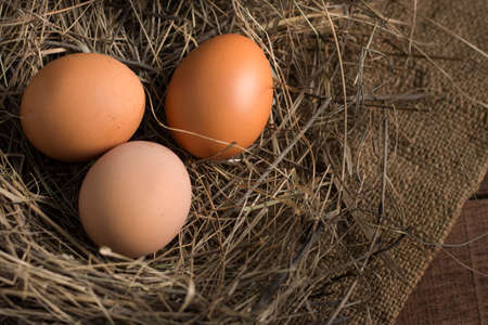 three eggs in a nest of hay on a background of burlap on a wooden surface, top view, with a copy of the space