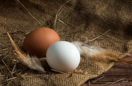 white and brown eggs with feathers on a brown wooden background with burlap