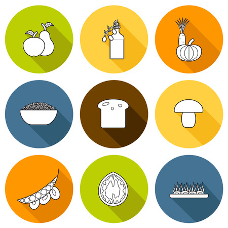 soy bean: Set of modern icons in flat outline shadow style on vegan food theme: fruit, vegetable, mushroom, soy, bean, oil, nut, bread, rice. Raw healthy food or vegan concept. Great for vegan site, app, organic market or shop, logo and emblem
