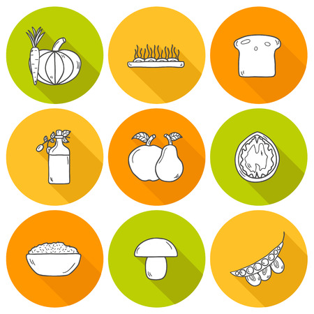 soy free: Set of modern icons with shadows in hand drawn style on vegan food theme: fruit, vegetable, mushroom, soy, bean, oil, nut, bread, rice. Raw healthy food or vegan concept. Great for vegan site, app, organic market or shop and emblem