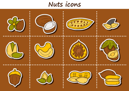 mixed nuts: Set of cartoon hand drawn stickers on nuts theme: hazelnut, pumpkin and sunflower seeds, peanut, pecan, pistachio, cashew, walnut, acorn, almond, coconut, cocoa. Raw healthy food concept for your design