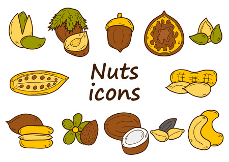 mixed nuts: Set of cartoon hand drawn objects on nuts theme: hazelnut, pumpkin and sunflower seeds, peanut, pecan, pistachio, cashew, walnut, acorn, almond, coconut, cocoa. Raw healthy food concept for your design Illustration