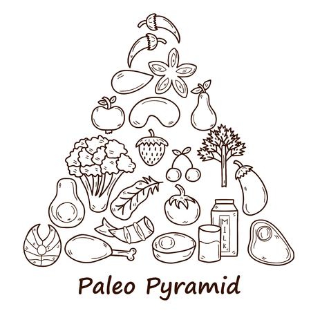 Set of objects in hand drawn style on diet theme: meat, fish, fruits, vegetables, spices, nuts. Paleo pyramid. Healthy food concept for your design Ilustracja