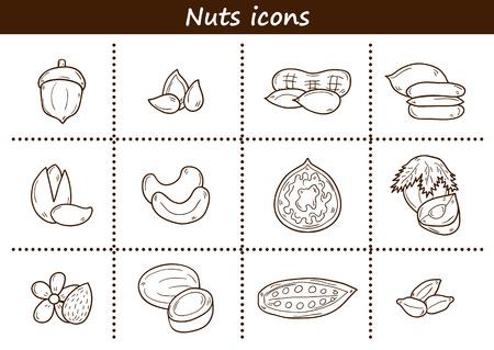 pecan: Set of cartoon hand drawn objects on nuts theme: hazelnut, pumpkin and sunflower seeds, peanut, pecan, pistachio, cashew, walnut, acorn, almond, coconut, cocoa. Raw healthy food concept