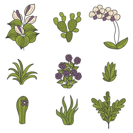 terrarium: Set of cute cartoon hand drawn houseplants icons
