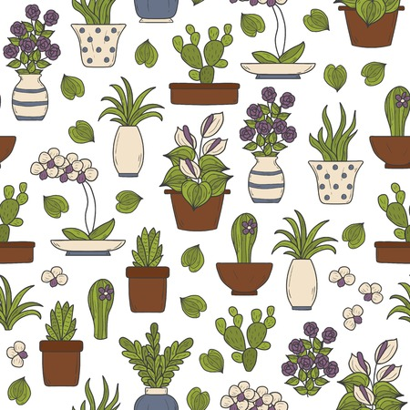 terrarium: Seamless background on houseplants theme with cartoon hand drawn objects