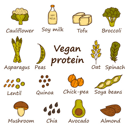 food and beverages: Set of cartoon hand drawn objects on vegan source of protein theme: tofy, soya beans and milk, quinoa, lentil, chia. Healthy vegetarian food concept for your design Illustration