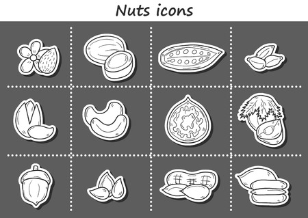 mixed nuts: Set of cartoon hand drawn objects on nuts theme: hazelnut, pumpkin and sunflower seeds, peanut. Raw healthy food concept
