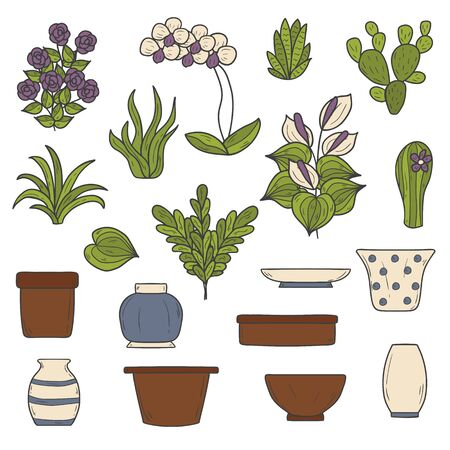 ferns and orchids: Set of cute cartoon hand drawn houseplants icons