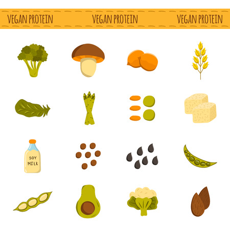 Set of cartoon objects. Vegan source of protein: tofu, soya beans and milk, quinoa, lentil, chia. Healthy vegetarian, vegan, raw food concept for your design. Organic shop, store, market design