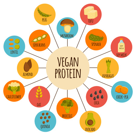protein source: Set of cartoon objects on vegan source of protein theme: tofu, soya beans and milk, quinoa, lentil, chia. Healthy vegetarian or vegan raw food concept for your design. Organic shop or market design