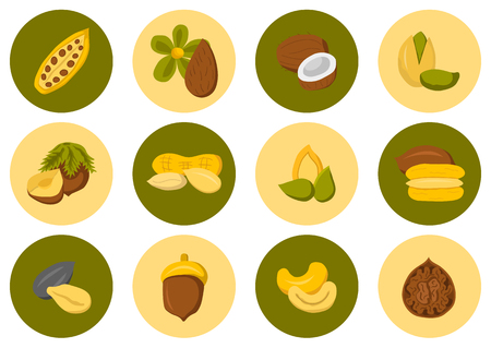 protein source: Set of type nuts and seeds cute cartoon icons. Healthy snack, diet food concept. Allergic products. Source of vegan protein. Raw organic food design for store or market
