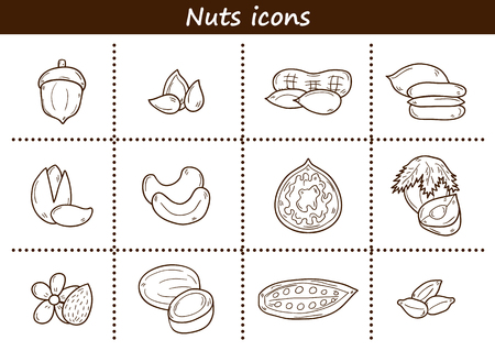 mixed nuts: Set of cartoon hand drawn objects on nuts theme: hazelnut, pumpkin and sunflower seeds, peanut, pecan, pistachio, cashew, walnut, acorn, almond, coconut, cocoa. Raw healthy food concept