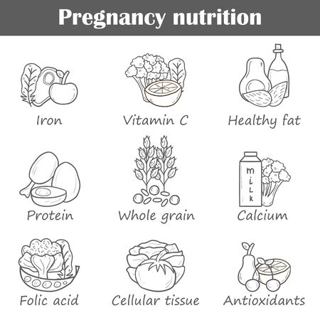 source of iron: Set of cartoon hand drawn pregnancy nutrition objects