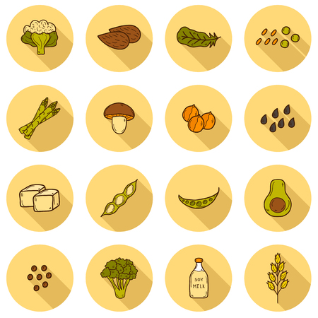 oats: Set of cartoon hand drawn objects on vegan source of protein theme: tofu, soya beans and milk, quinoa, lentil, chia. Healthy vegetarian food concept for your design