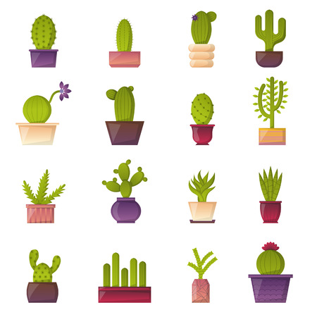 house plant: Vector illustration with cartoon isolated cactus icon. Vector house plant in flowerpot, home interior design. Desert mexican green succulent. Home flowers cartoon indoor objects. Travel to Mexico icon Illustration