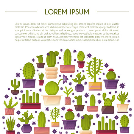 house plant: Vector illustration with cartoon isolated cactus. Vector house plant in flowerpot, home interior background. Desert mexican succulent. Home flowers cartoon indoor objects. Travel to Mexico icon