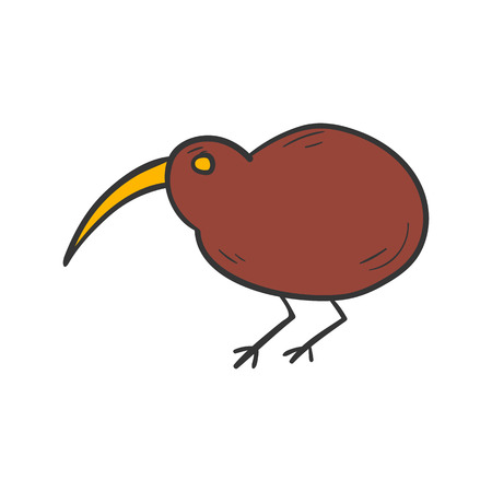 Vector cartoon illustration with hand drawn brown isolated new zealand kiwi bird on white background. Exotic tropical bird icon. Vector kiwi bird isolated. Children book cover illustration Illustration