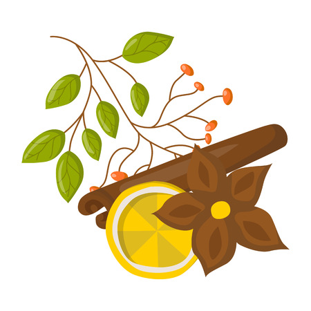 anise: Vector illustration with cartoon isolated set of spices: anise star, citrus fruit, cinnamon stick. Autumn, winter, Christmas wine beverage. Seasoning spicy savory ingredient Illustration