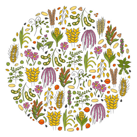 Vector illustration with cartoon hand drawn porridge cereals background: oats seeds, soybean, rye, wheat, quinoa, rice, chia seeds, lentil, chickpeas. Vector healthy breakfast. Food hand drawn objects