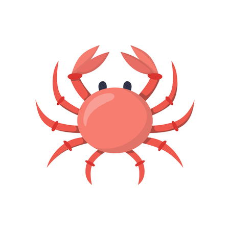 children crab: Vector illustration with cartoon red crab. Seafood or sea market concept. Vector isolated crab icon on white background. Fresh seafood icon. Underwater wildlife. Children book cover illustration