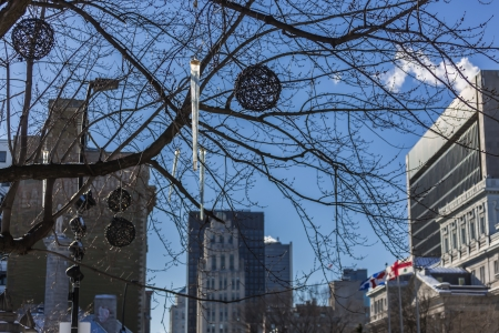 come in: A beautiful tree without leaves in the cold winter in the Montreal City, Quebec, Canada
