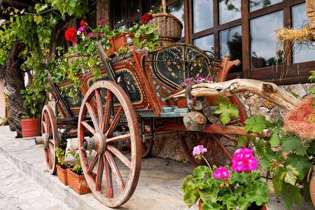 veliko: Ox Cart with Flowers in Veliko Tarnovo Bulgaria