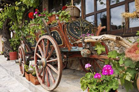 tarnovo: Ox Cart with Flowers in Veliko Tarnovo Bulgaria