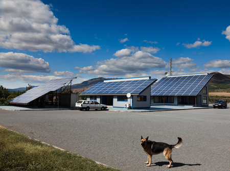 solarpanel: Dog in front of a house with photovoltaic installation