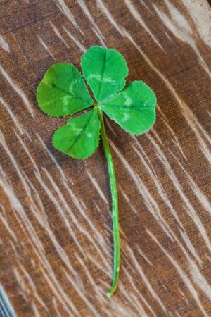 symbolics: Photo of four-leaf clover symbol of good luck