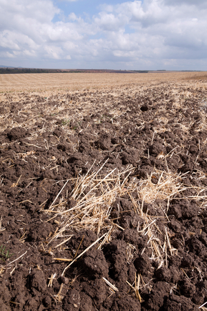 the ploughed field: newly ploughed field running to infinity with a cloudy blue sky
