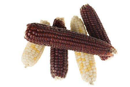 mini blue and yellow corn isolated on a white background.