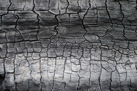 Burnt wood texture. Charred board Stock Photo - 78069676