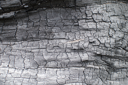 Burnt wood texture. Charred board Stock Photo - 78069677