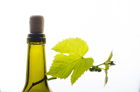 A bottle of wine with young grapes Stock Photo