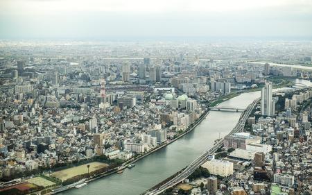 bird eye: Tokyo bird eye view