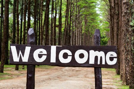 welcom: Welcom sign in pine trees forest. Stock Photo