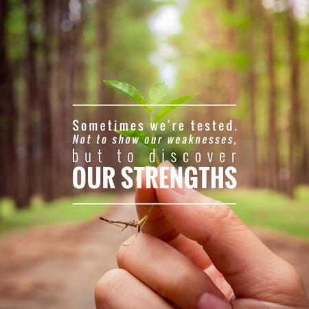 cotizacion: Cita inspirada en Manos que sostienen la pequeña planta muestran idea conservadora con el fondo de árbol de pino.