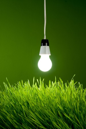 Light bulb with spring grass - Environment Concept Stock Photo - 4576459
