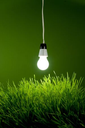 Light bulb with spring grass - Environment Concept Stock Photo - 4576429