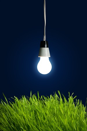 Light bulb with spring grass - Environment Concept Stock Photo - 4576210