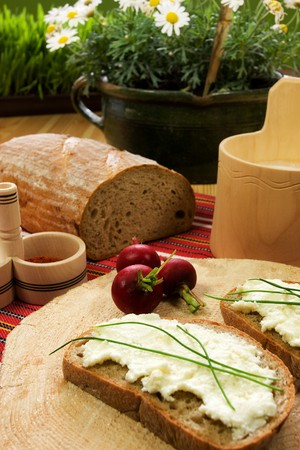 Healthy breakfast  cotage cheese, red onion and slice of bread Stock Photo