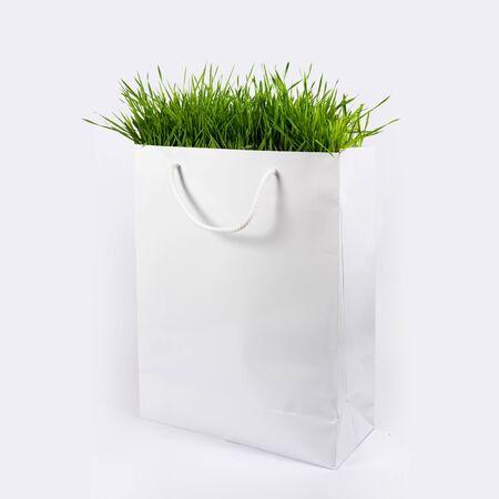 white paper bag: Concepto de Medio Ambiente - la hierba verde en bolsa de papel blanco Foto de archivo