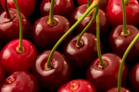 Sweet cherries and drops of water photo