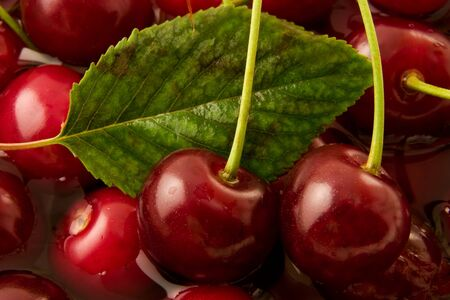 Sweet cherries and drops of water