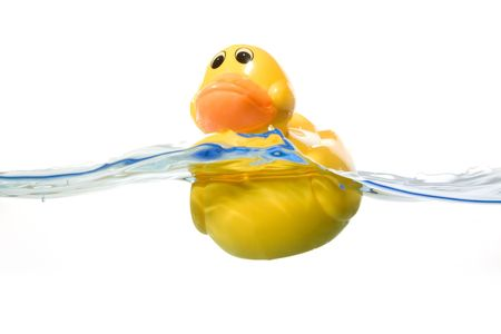 rubber ducky: Duck yellow in water Stock Photo